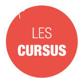 les_cursus.png